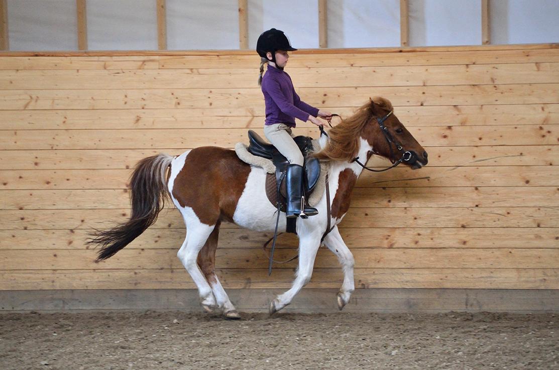 EKT Rideskole Ekeberg gallopp ridning jenteridning