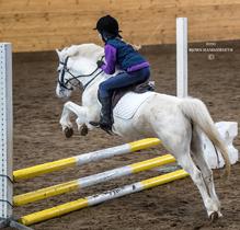 Rideskole sprangridning Ekeberg Nordstrand