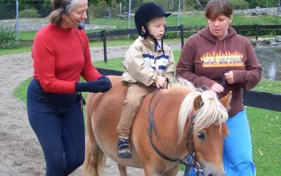 Fagseminar om ridefysioterapi